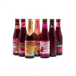 Fruitbierenpakket 9 flesjes