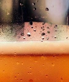 Basisingrediënten bier